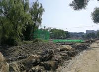 南充北湖公园改造工程已经修成这样了,8月底主园开园…